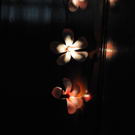 20 x fragipani handmade flower wedding home decor hanging lantern indoor outdoor backyard garden strand string light