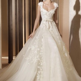 Princess Sweetheart Cap Floor Length Court Tulle Lace Wedding Dress