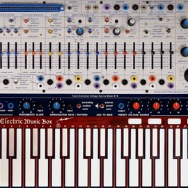 Buchla Electronic Musical Instruments - Music Easel