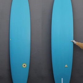 Gary Hanel - 9'4 Hanel Pintail Log