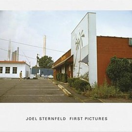 Joel Sternfeld - First Pictures