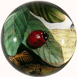 john delian - JOHN DERIAN LADYBUG ON LEAF DOME PAPERWEIGHT