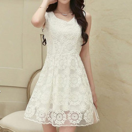 Fashion Round Neck Hollow Out Embroidery Sleeveless Organza Dress
