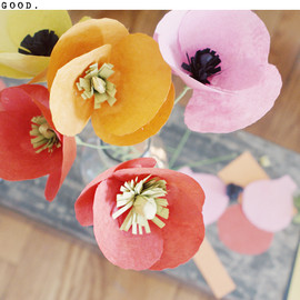 Poppies Flower Kit