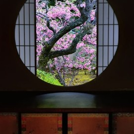 Kyoto - A window of Enlightenment at Unryu-in temple, Kyoto, Japan