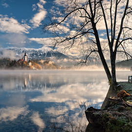 Slovenia - Bench with a view in Bled