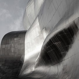 Frank Gehry - metallic wave