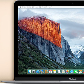 Apple - MacBook (Retina, 12-inch, Early 2016)
