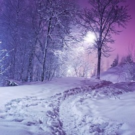 snow at night.