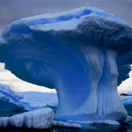 New Zealand - An Alaska iceberg.Click through for image source.
