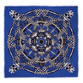 Alexander McQueen - Feather circle skull print scarf
