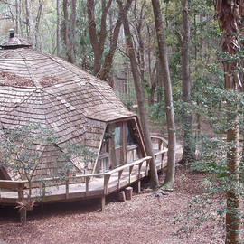 The Hostel In the Forest