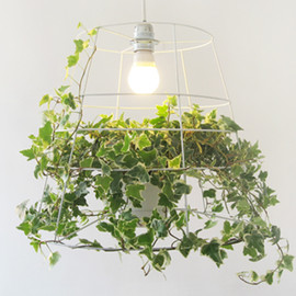 Meirav Barzilay - PHOTOSYNTHESIS LAMP