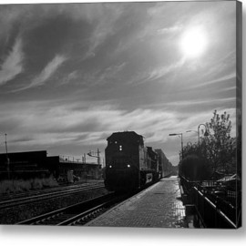 Fine Art America - Out Of The Sun Acrylic Print By Rees Gordon