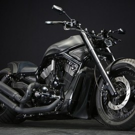 Harley-Davidson - 2007 VESCDX 300 Fat Tire Custom