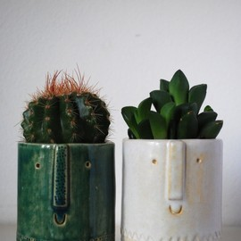 cacti in happy pots