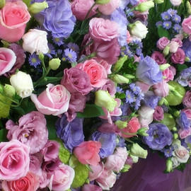 FLOWERS - COLORFUL ♡