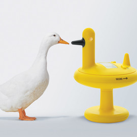 alessi - duck timer