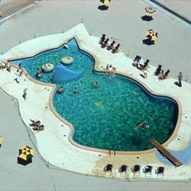 Cat-shaped pool
