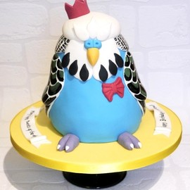 cakes by beth - Fat budgie cake