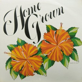 Various Artists - Home Grown Vol.2