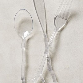 Anthropologie - Twig-Handled Flatware
