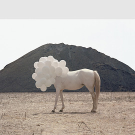 Andrea Galvani - Death of an image #5
