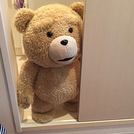 ted - 等身大 ted