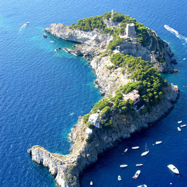 Li Galli Islands, Italy - Dolphin♡