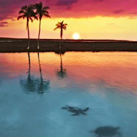 Kiholo Bay, Hawaii - Sunset