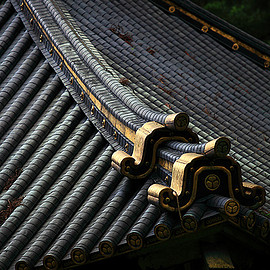 Japanese Roof Tiling