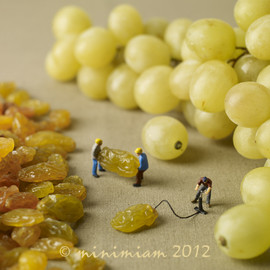 minimiam - grape