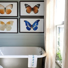 I am in love with these butterfly prints. I'm thinking I can make these myself with some stock art.