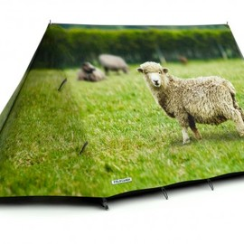 fieldcandy - Animal farm