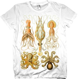 nonfictiontees - Squid Tshirt Ocean Mollusk Squid WOMENS Shirt