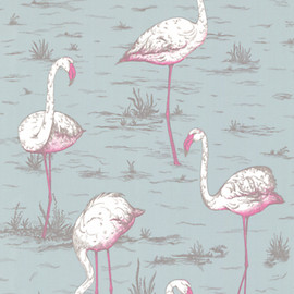 cole&son - Flamingos Wallpaper/blue