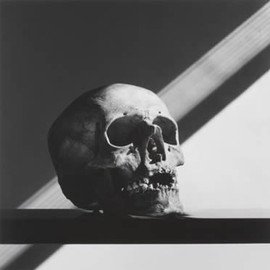 Robert Mapplethorpe - SKULL