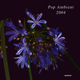 Various Artists - Pop Ambient 2004