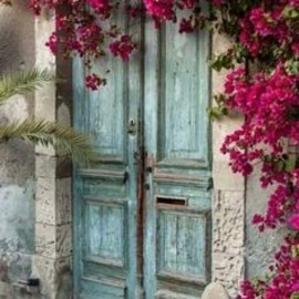 BLUE: PINK: door, flower