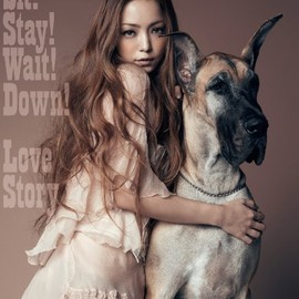 namie amuro, 安室 奈美恵 - Sit! Stay! Wait! Down!/Love Story(DVD付)