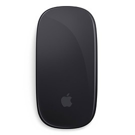 Apple - Apple Magic Mouse 2 spaces grey