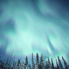 travel - Northern Lights Over Snow Covered Photograph