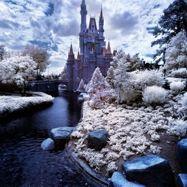 Walt Disney World - Infrared Cinderella Castle  by Tom Bricker