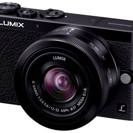 Panasonic - LUMIX DMC-GM1K-K