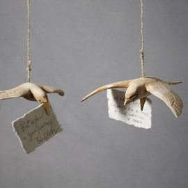 BHLDN - Broad-Winged Dove Clips