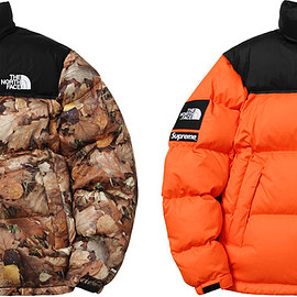 Supreme, THE NORTH FACE - Nuptse Jacket with Packable hood