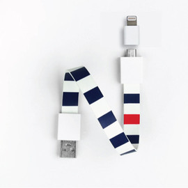 Loop - micro usb & iPhone/iPod cable