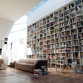 bookshelf/amazing room