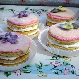 Little fairy opera cakes
