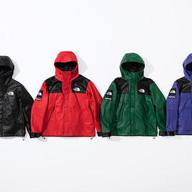 Supreme, THE NORTH FACE - Leather Mountain Parka